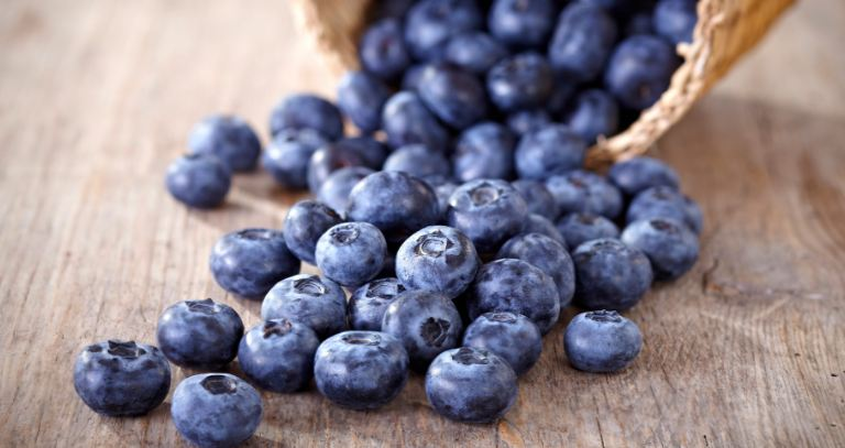 Blueberries Top Famous Foods For Better Health 2019