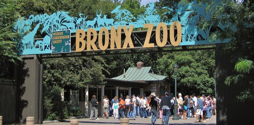 Best Zoo in the World
