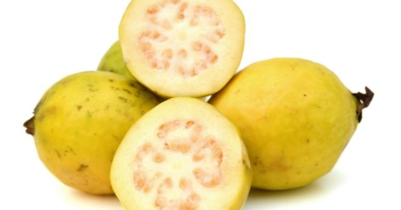 Guava Producing Countries