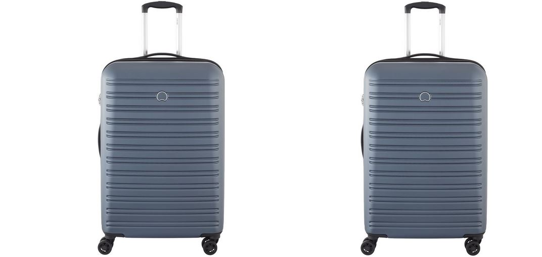 Delsey Top Most Popular Luggage Brands in World 2019