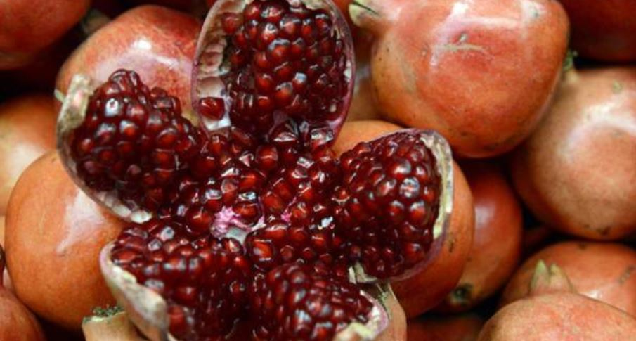 Pomegranate Producing States in India