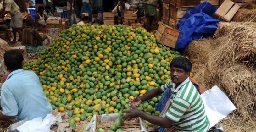 Mango Producing States in India
