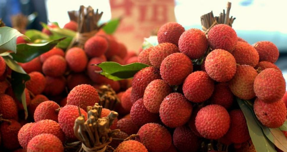 Litchi Producing States in India